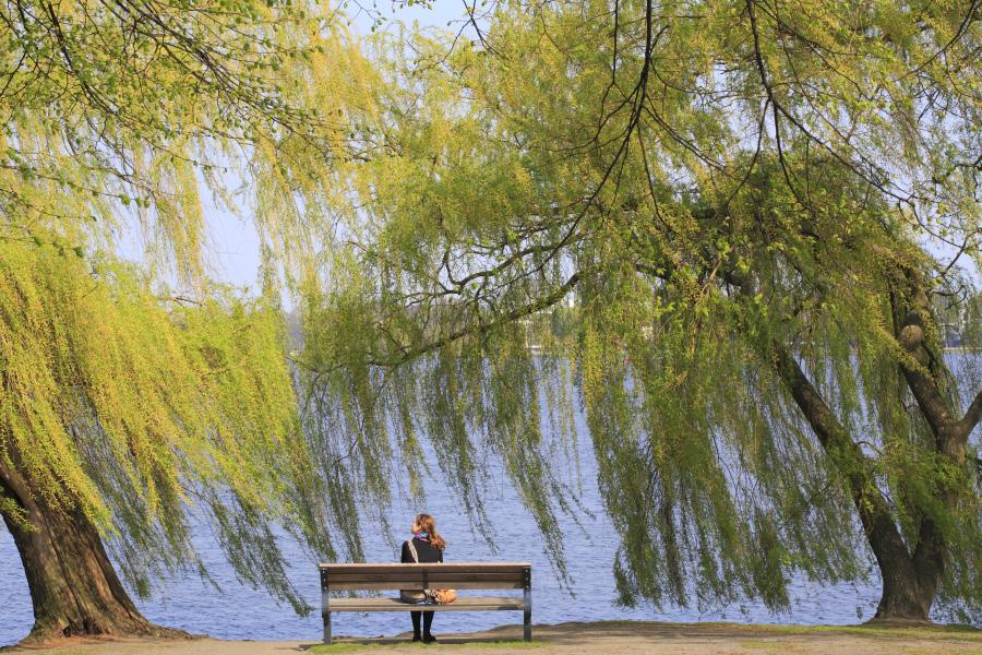 Hambourg responsable la conqu te de l espace vert for Responsable des espaces verts