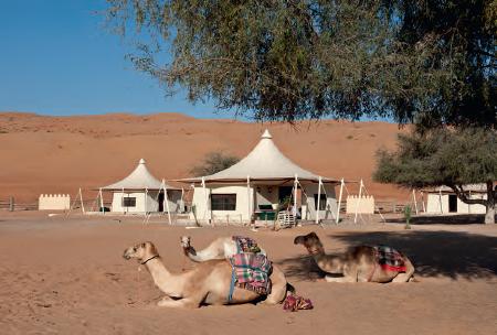 le Desert Night Camp