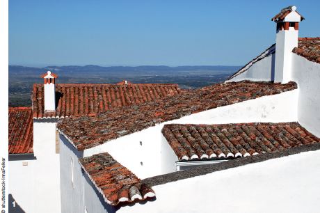 1 — Rougeoyant au chaud soleil de l'Alentejo, les toits de tuiles contrastent avec la blancheur ambiante et le vert des oliviers.