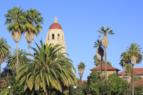 La Silicon Valley, c'est d'abord une histoire de matière grise ; une success story fondée sur les têtes bien faites sorties de Stanford (ici en photo), de Berkeley ou de UCSF.