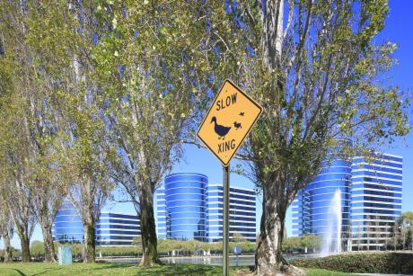 Les géants comme Oracle ont longtemps choisi les environs de Palo Alto pour installer leur siège. Aujourd'hui, les petits derniers comme Über ou Twitter optent pour le centre de San Francisco.
