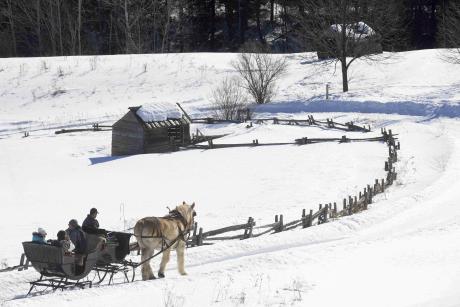 Tous derrière et lui devant. Equipé pour marcher sur la neige à pas feutrés, un cheval tire vaillamment le traîneau où des touristes emmitouflés contemplent un paysage en grand blanc, comme s'il n'y avait jamais de printemps.