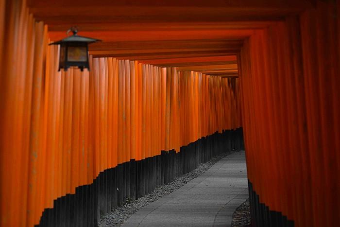 À Kyoto, l'allée qui conduit au sanctuaire Fushimi Inari Taisha est bordée sur quatre kilomètres de 10 000 toriis, portails rouge vif faisant la séparation entre le monde matériel et le monde spirituel.