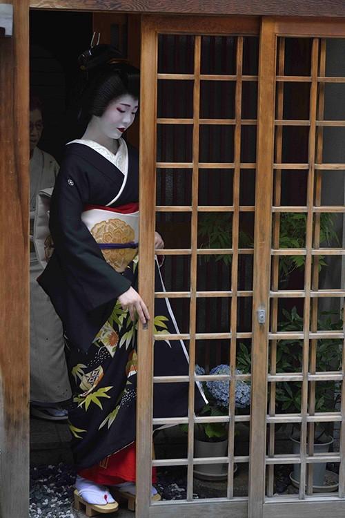 """Incarnant toute la délicatesse des manières japonaises, une maiko – une apprentie geiko, comme on appelle les geishas à Kyoto – sort en kimono d'apparat d'une des nombreuses maisons du quartier de Gion à Kyoto où ces """"dames de l'art"""" sont formées depuis leur tendre enfance à la musique, à la poésie, à la cérémonie du thé…"""