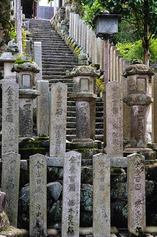 Avant Tokyo, avant même Kyoto, Nara fut la capitale du pays au VIIIe siècle. Le temple Todai-ji remonte à cette lointaine époque, notamment son pavillon principal, plus grand édifice en bois du monde.