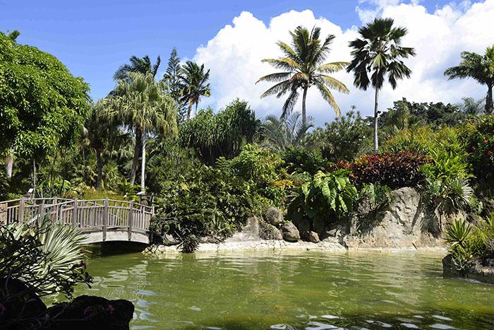 deshaies et le jardin botanique (coluche)