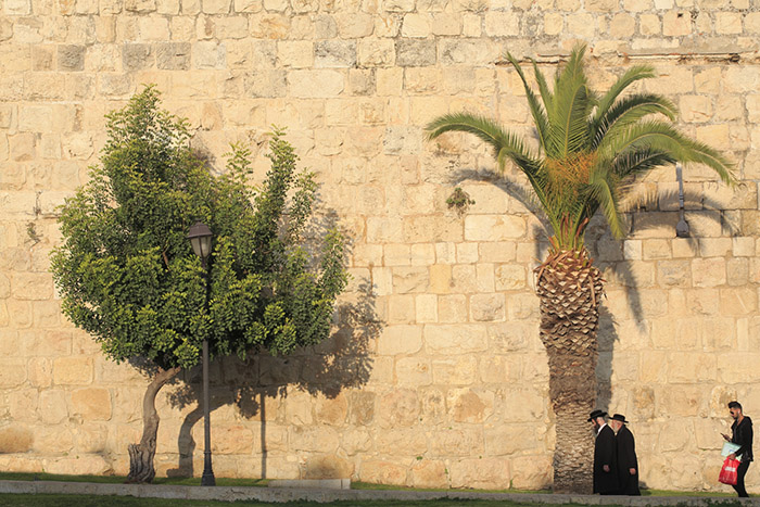 jerusalem remparts. ©Ludovic MAISANT