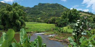 Niché au sein d'une nature luxuriante, le domaine de l'Étoile démontre que le pouvoir d'attraction de l'île Maurice va bien au-delà de ses plages sublimes et se prolonge jusque dans ses terres intérieures.
