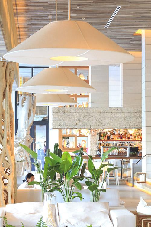 Ponctué çà et là d'éléments naturels, le 1 Hotel propose un luxe décontracté axé sur le bien-être etl'éco-responsabilité. © Ludovic Maisant