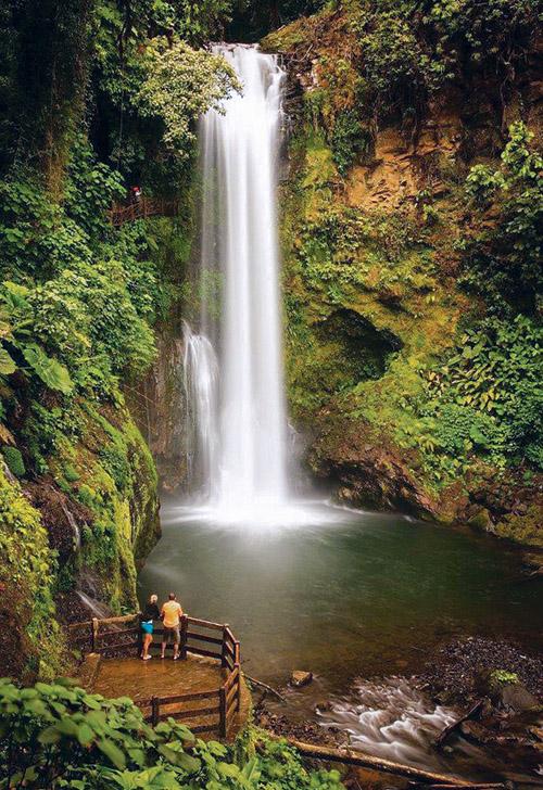 Au cœur du jardin tropical La Paz Waterfall Gardens, cinq cascades s'échappent de la luxuriance végétale en descendant les pentes du volcan Poas. © La Paz Waterfall Gardens-James Richard