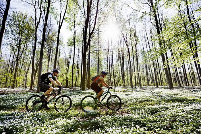 …ou les balades à vélo à faire à proximité des hôtels. © Westin