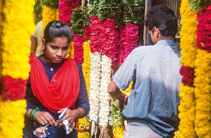 À Pondichéry, le marché Goubert compose un joli bouquet de couleurs et d'odeurs délicates. Au marché aux fleurs, ce sont celles des longues guirlandes de jasmin destinées aux mariages ou aux offrandes aux dieux ; au marché aux épices, celles du safran, du curry, du curcuma ou de la cannelle…