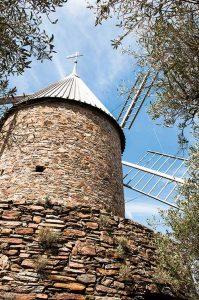Remontant au XIVe siècle, le moulin à vent de Collioure sert aujourd'hui à l'élaboration d'huile d'olive. ©Photos Alain Parinet
