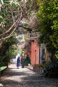 Le quartier du Mouré, dédale de rues escarpées et fleuries renfermant toute l'âme de Collioure. ©Photos Alain Parinet