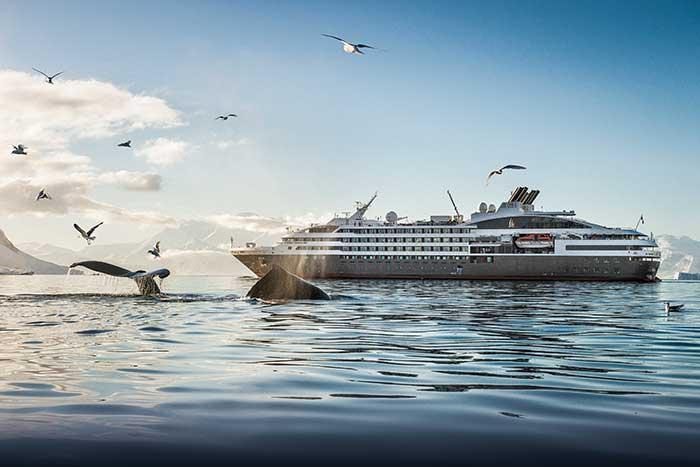 Proposées par Hurtigruten et Ponant, les croisières-expéditions en Antarctique sont réservées à des groupes incentives ultra VIP. Ces expériences hors du commun nécessitent la préservation d'un milieu sublime, mais fragile, entre baleines, phoques et manchots royaux.© Lorraine Turci - Ponant