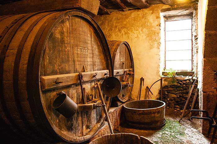 Le Morgadio de Calcada, une noble demeure aux airs de musée avec anciens chais et salons d'époque.
