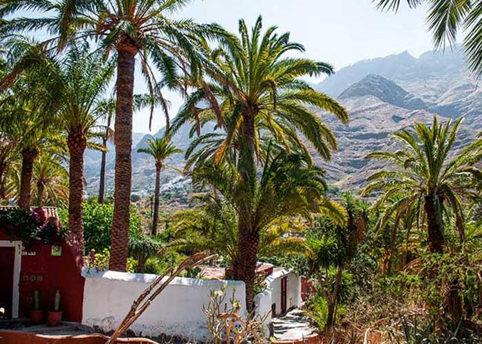 L'intérieur de l'île organise une succession de vallées ponctuées d'oasis verdoyantes, ébouriffées de palmiers ou de bananiers.