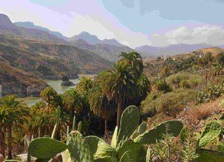 Entre exubérance végétale, folie minérale et débauche de couleurs, l'île de Gran Canaria voit s'étendre de sublimes palmeraies enserrées dans un relief tourmenté, comme ici autour du barrage de la Sorrueda.
