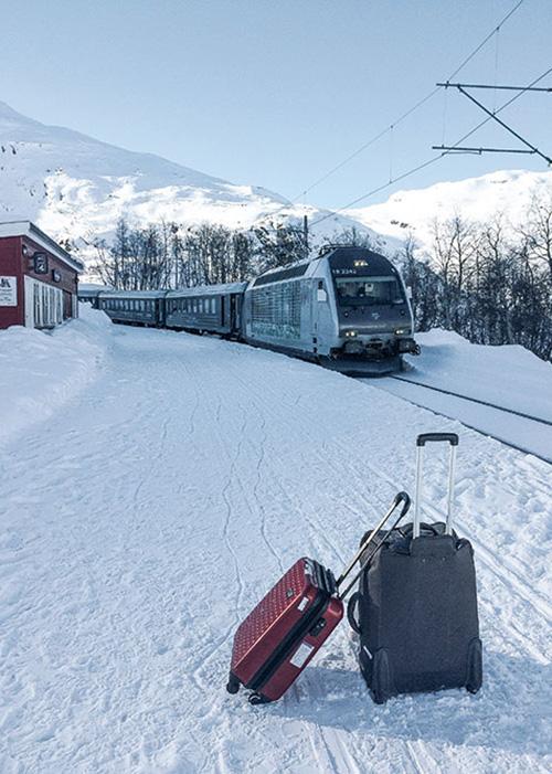 Parmi les lignes ferroviaires les plus pittoresques au monde, le Flamsbana descend des montagnes jusqu'à l'Aurlandsfjord, tortillant entre pentes enneigées et panoramas grandioses.