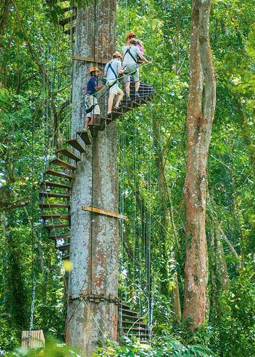 Des escaliers en colimaçon grimpant tout en haut des arbres, des ponts surplombant la canopée, des tyroliennes pour survoler le tout : Flying Hanuman propose une expérience unique au cœur de la jungle.