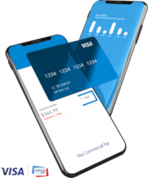 Visa-Commercial-Pay-Conferma