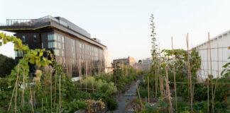 Le hall 6 de Paris Expo Porte de Versailles est surmonté par une des plus grandes fermes urbaines d'Europe.