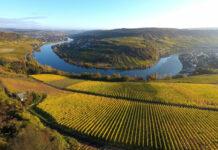 Vue sur la vallée de la Moselle, au Luxembourg. (c) LFT.